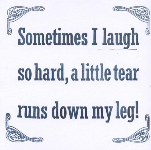 sometimes I laugh so hard a little tear runs down my leg