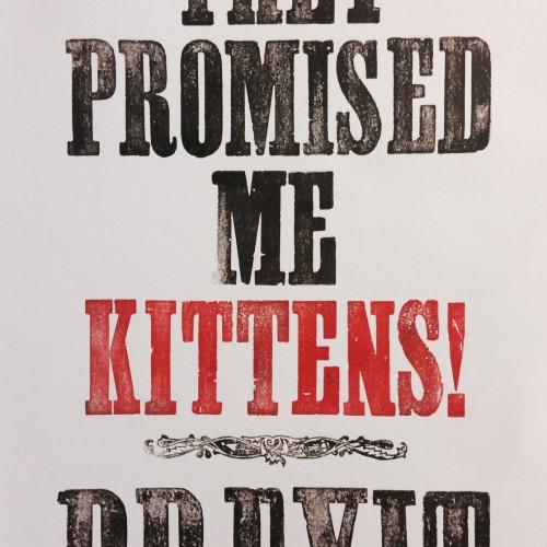 Brexit Kittens